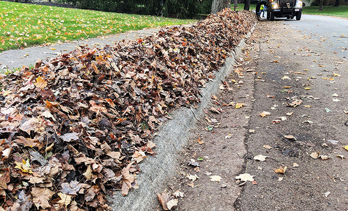 A leaf pile at the street curb awaits collection.